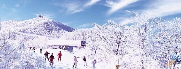 冬季旅游:一场谁都不愿错过的大戏